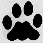 A Pawprint. Just Because.
